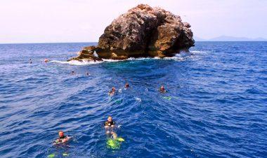 scuba diving sail rock from koh samui