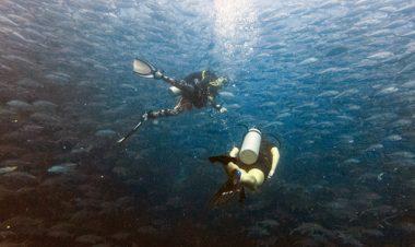 padi deep diver specialty course koh phangan